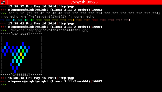 Screenshot showing ANSI background color for an OpenPGP key.