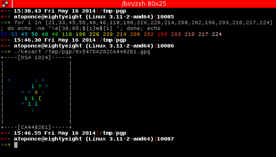 Screenshot showing ANSI foreground color for an OpenPGP key.